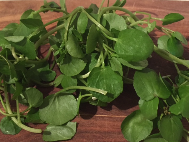 Watercress and braces